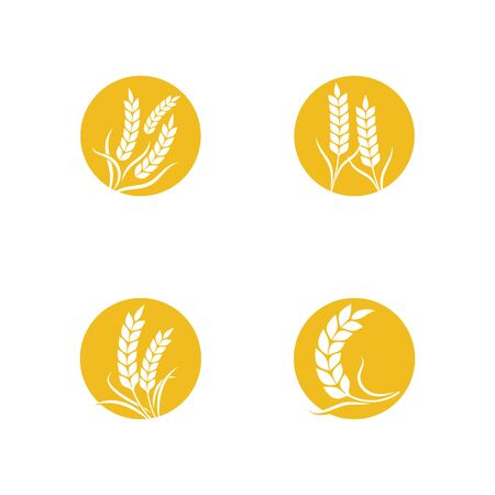 Illustration for Agriculture wheat Template vector icon design illustration - Royalty Free Image