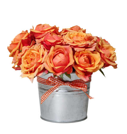 Bouquet of orange roses in the pot on the white background