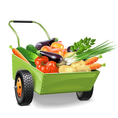 Illustration for Vector Wheelbarrow with Vegetables isolated on white background - Royalty Free Image