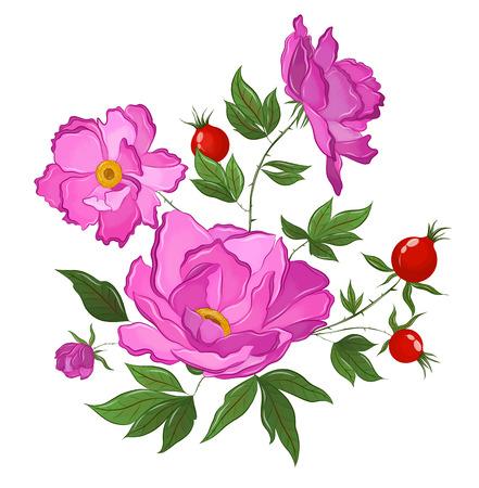 Illustration pour flowering rose hips with berries - image libre de droit