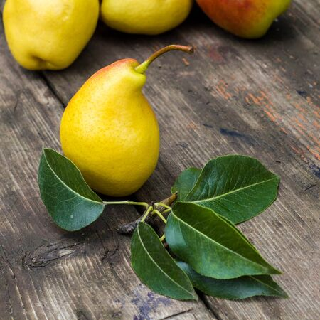 Foto für fresh pears with leaves on the dark rustic wooden table. - Lizenzfreies Bild