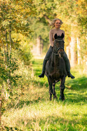 Photo for Beautiful girl riding a horse riding without a saddle in a autumn forest. - Royalty Free Image