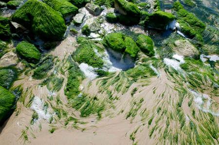 the beach of Cap Blanc-nez