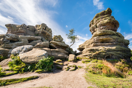 Weathered Brimham Rocks - Brimham Rocks on Brimham Moor in North Yorkshire are weathered sandstone, known as Millstone Grit,creating some dramatic shapes, many of which have been named
