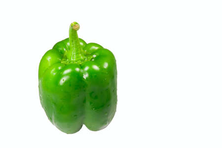 Wet green pepper isolated cleanly against a white background.