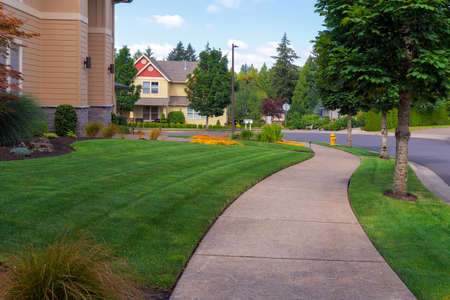 House frontyard and parking strip freshly mowed green grass lawn in North American suburban neighborhood