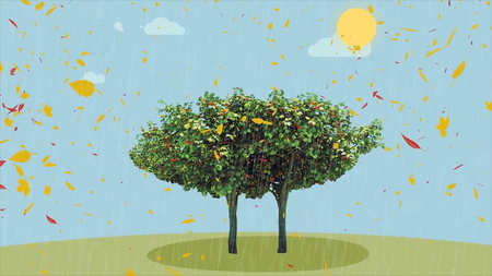 Four season tree and waiting money animation. A lot of money from tree animation. Four season tree. Four seasons for a lonely tree HD
