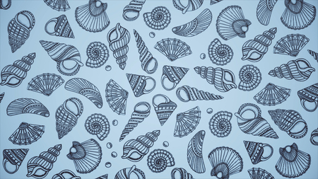 Background of painted shells. Beautiful marine animation of painted shells.