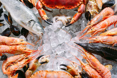 Photo pour Seafood on ice. Crabs, sturgeon, shellfish, shrimp, Rapana, Dorado, on white ice. - image libre de droit