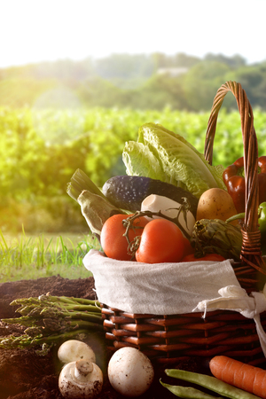 Assortment of vegetables in a wicker basket on soil with crop landscape background. Vertical composition. Front viewの写真素材