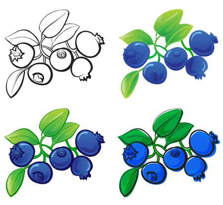 Illustration pour Blueberry - image libre de droit