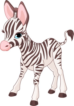 Photo for Illustration of standing cute zebra foal - Royalty Free Image