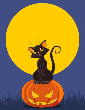 Black  cat sitting on Halloween pumpkin. Greeting card/invitation