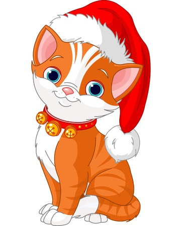 Christmas cat with Santas hat