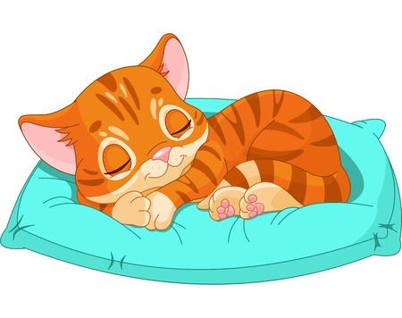 Cute kitten sleeping on the blue pillow