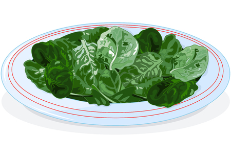 Illustration of plate of spinach