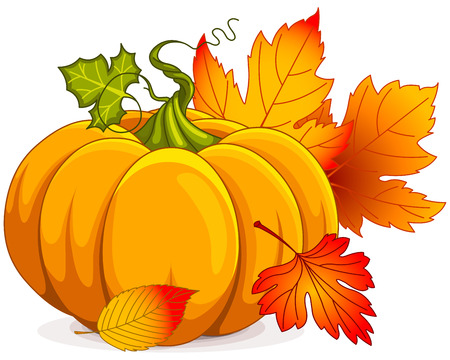 Illustration of Autumn Pumpkin and leaves