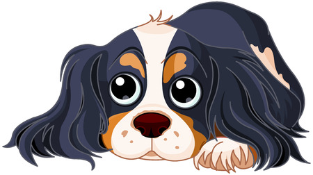 Illustration pour Illustration of Cavalier King Charles Spaniel - image libre de droit