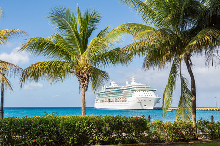 White Luxury cruise ship in blue water beyond palm trees
