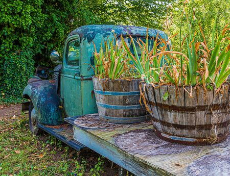 Photo pour Old Truck with Plants - image libre de droit