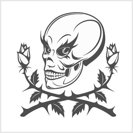 Joker - clown skull isolated on white background