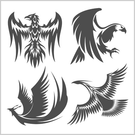 Flying eagle, peacock and pheasant vector for heraldic or