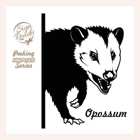 Illustration pour Peeking Opossum - face head isolated on white - image libre de droit