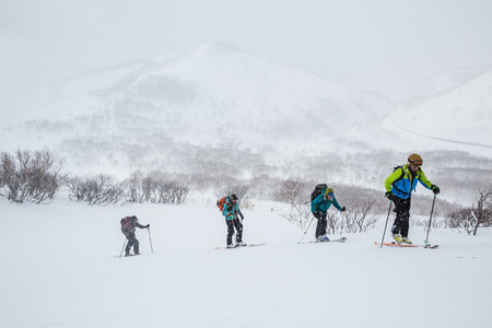 Foto per Group of four backcountry skiers hiking uphill in Hokkaido. The group is skiing deep powder in the backcountry near Niseko, Japan in a snowstorm. - Immagine Royalty Free