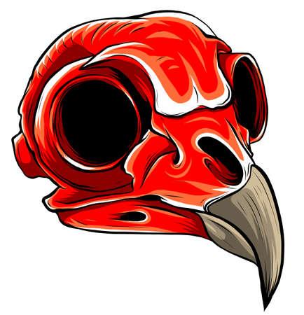 Illustration pour Realistic red bird skull. vector Illustration for designer on a white background. - image libre de droit