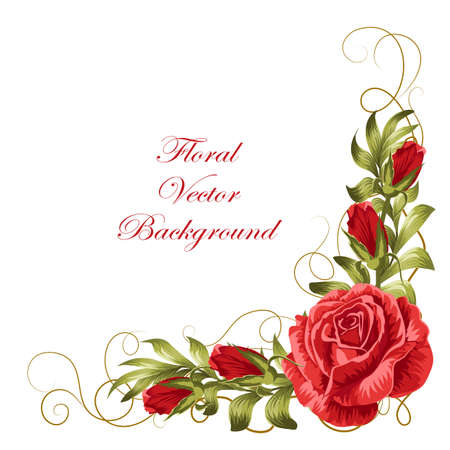 Illustration for Corner composition with red roses and green leaves. Vector illustration isolated on white background. - Royalty Free Image
