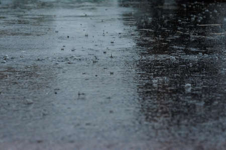 large raindrops falling on the road asphalt during a day of rain
