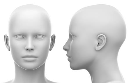 Foto de Blank White Female Head - Side and Front view - Imagen libre de derechos