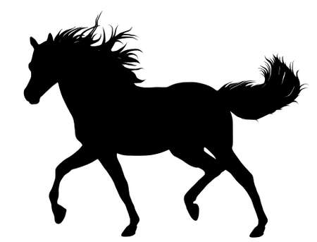 Illustration for Black horse silhouette isolated on white - Royalty Free Image
