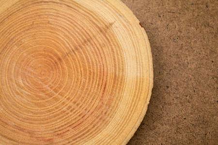 Photo pour close up of wooden background of cut tree trunk - image libre de droit
