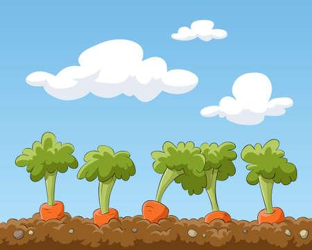 Cartoon garden bed with carrots, illustration