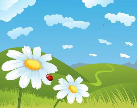 Ilustración de Summer daisies - Imagen libre de derechos