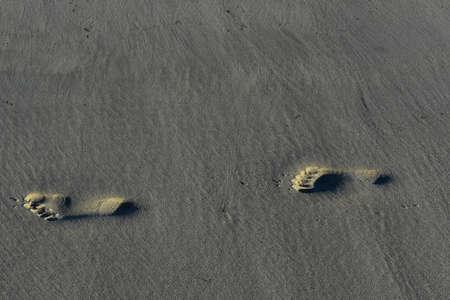Photo pour Beautiful foot prints on the coast of cape cod  - image libre de droit