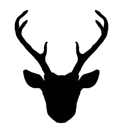 Illustration for Beautiful hand drawn tribal style deer head silhouette. Magic vintage vector illustration in black and white. Spiritual art, yoga, boho style, nature and wilderness. - Royalty Free Image