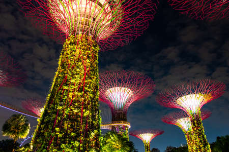 Photo for Singapore - Breathtaking scene of the supertree night light show at Garden by the Bay.. - Royalty Free Image