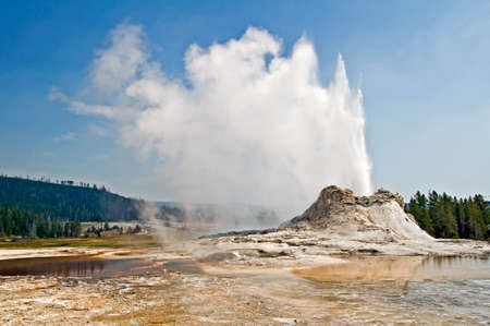 Castle geyser, Yellowstone national park, USA