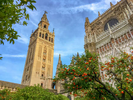 Photo pour Cathedral of Seville and the Giralda, Andalusia, Spain - image libre de droit