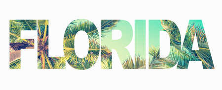 Foto de Word Florida with palm trees on white background - Imagen libre de derechos