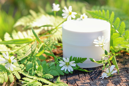 Photo pour Cosmetic cream for skin care. Natural cosmetics in nature outdoors with green fern leaves and wild flowers - image libre de droit