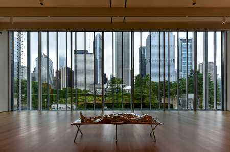 Chicago - September 8, 2015: Skyline view of Chicago from the Art Institute of Chicago.