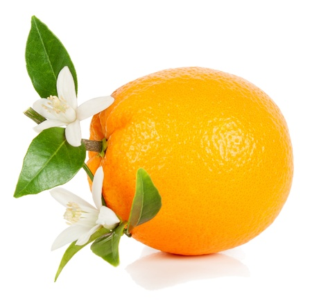 whole orange  fruit  with leaves and flowers  isolated on white background