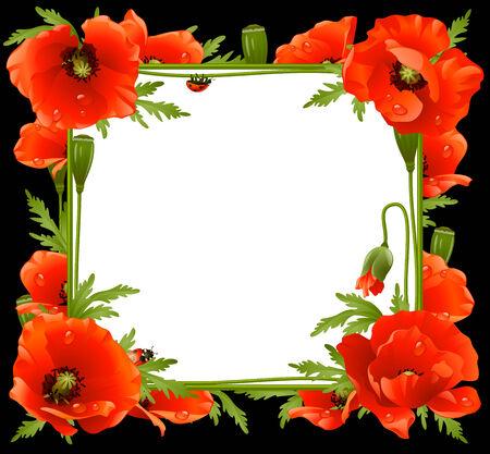 Poppy Floral Frame