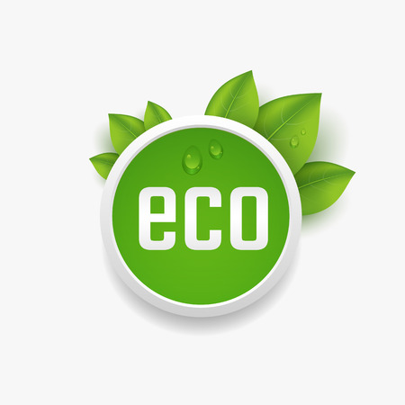 Eco label, button with green leaves and dewdrop. Vector illustration