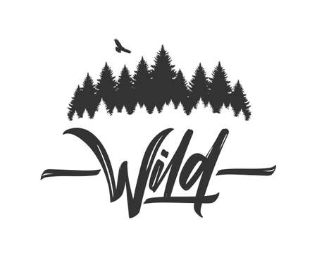 Hand drawn type lettering of Wild with silhouette of Pine Forest and Hawk. Brush calligraphy. Typography design.