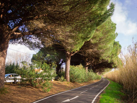 Foto de The scenic bike track that goes along the highway in Saint-Aygulf, France - Imagen libre de derechos