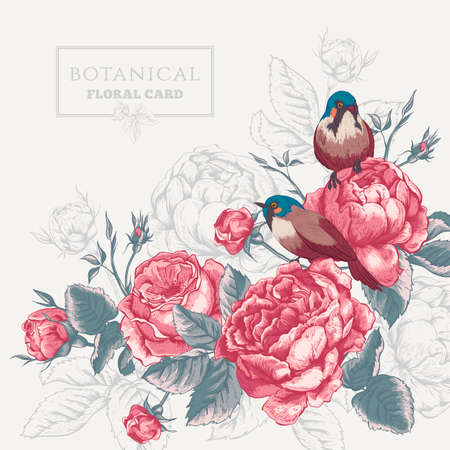 Botanical floral card in vintage style with blooming english roses and birds, vector illustration on gray background